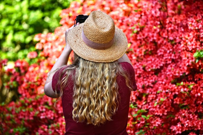 girl photographing fresh blooming flowers
